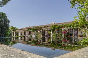 Quinta em Vila Nova da Baronia