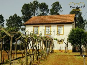 Quinta em Cernache do Bonjardim - Nesperal - Palhais